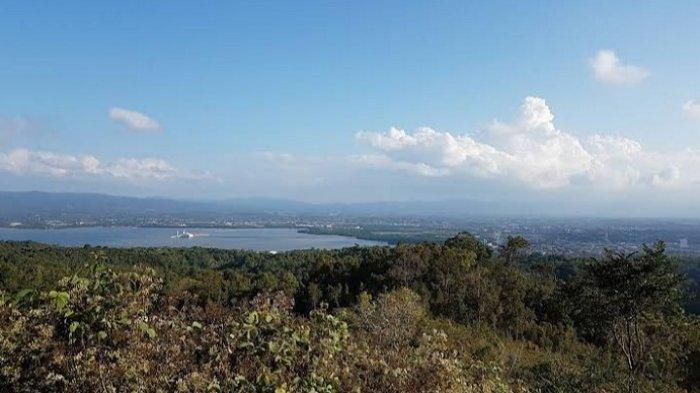 Melihat Pesona Kota Kendari dari Puncak Amarilis di area Kawasan Taman Hutan Rakyat Kota Kendari, Kelurahan Watu-Watu, Kecamatan Kendari Barat.