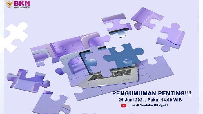 Pengumuman Penting CPNS 2021 dan PPPK 2021