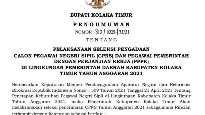 Syarat Berkas Melamar CPNS dan PPPK 2021 Kolaka Timur yang Harus Dipenuhi, Terbuka 696 Formasi