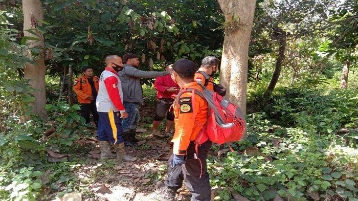 6 Hari Hilang di Hutan, Warga Kolaka Timur Belum Ditemukan, Tim SAR Hentikan Sementara Pencarian
