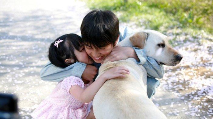 Sinopsis Film Korea Heart Is atau Hearty Paws, Kisah Persahabatan dengan Anjing yang Setia