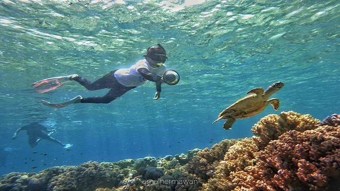 Kunjungi Pantai Hundue di Pulau Tomia Wakatobi Suguhkan Pemandangan Pasir Putih & Pesona Bawah Laut