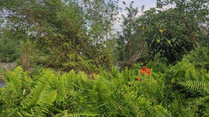 Pencarian Hari Ketiga, Pria Pekerja Kebun Nilam di Luwu Timur yang Hilang Belum Ditemukan