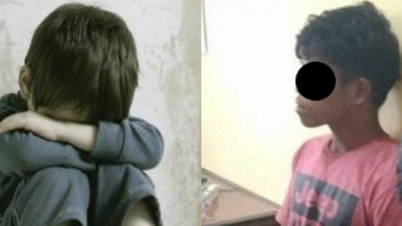 kasus-pedofilia-21-bocah-laki-laki-di-buton-selatan.jpg