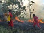 kebakaran-lahan-perkebunan-di-konawe-selatan-sulawesi-tenggara.jpg