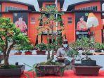 pameran-dan-kontes-bonsai-2021-kpp-kendari.jpg