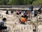 penanaman-mangrove-di-wakatobi.jpg