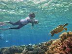 suasana-bawah-laut-di-pantai-hundue-di-pulau-tomia-kabupaten-wakatobi-provinsi-sulawesi-tenggara.jpg