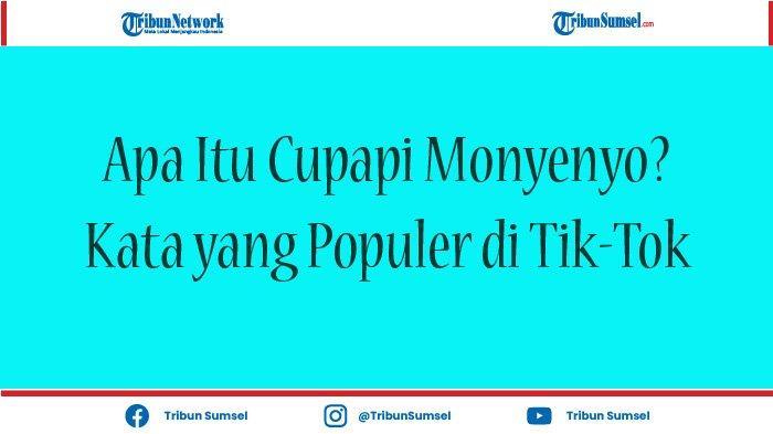 Apa Itu Cupapi Monyenyo, Ini Arti Kata yang Populer di Aplikasi Tik-Tok