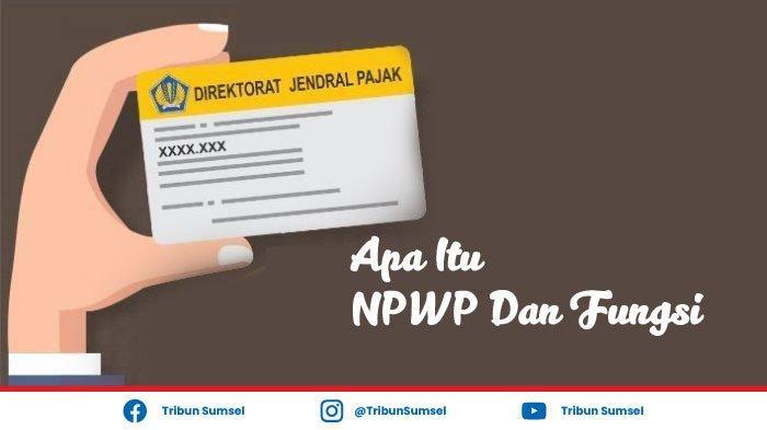Apa Itu NPWP, Apa Fungsi dan Manfaat Memiliki NPWP, Ini Penjelasannya