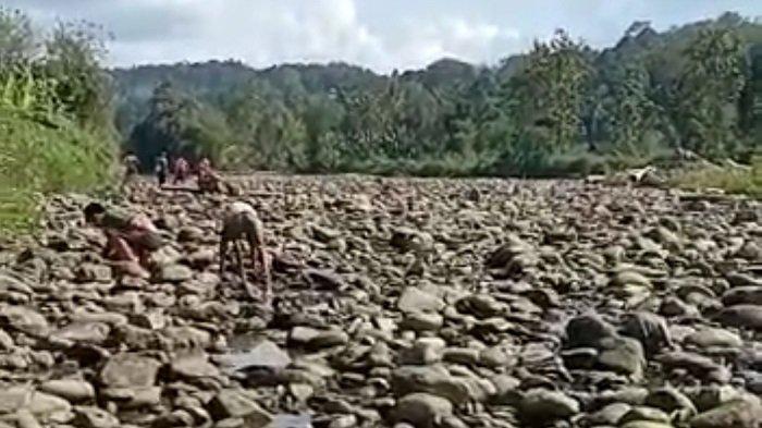 Beredar Video Sungai Selabung di OKU Selatan Kering, Ini Dugaan Warga Soal Waduk