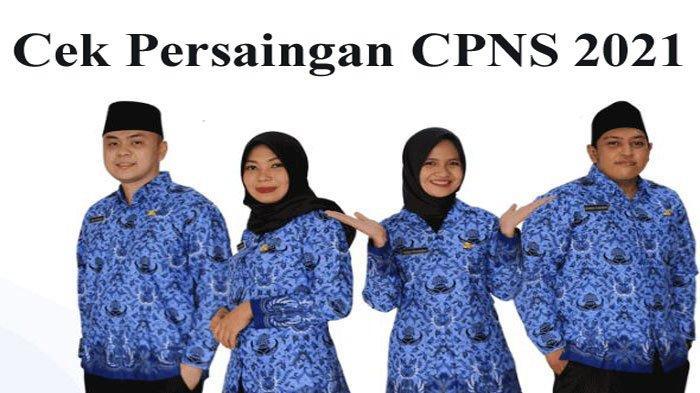 Berpeluang Besar Diterima Jadi PNS, BKN Bocorkan Instansi yang Minim Peserta CPNS 2021 Daftar Segera