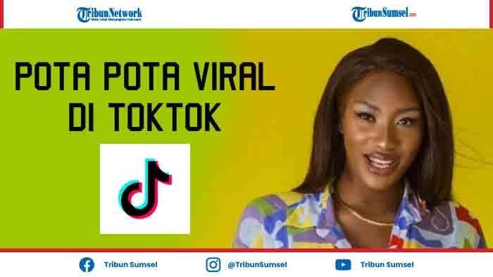 Download Lagu MP3 Pota Pota Viral di TikTok, Lengkap Lirik Lagu Copines - Aya Nakamura