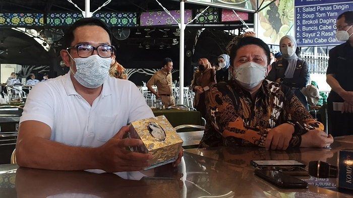 Pertama Kali Jajal Makanan dari Rotan Muda, Ridwan Kamil Ungkap Rasanya