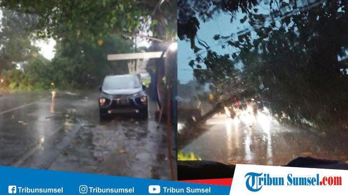 Jawaban Kenapa Mobil Segera Dicuci Setelah Diguyur Hujan Terutama di Permukaan Bodi Mobil