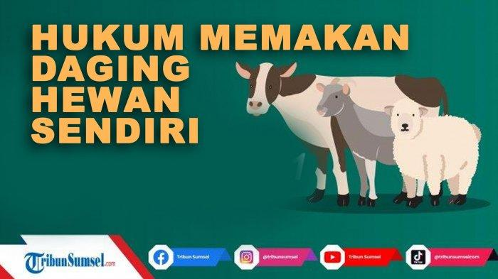 Hukum Memakan Daging Kurban Sendiri yang Wajib Diketahui, Amalan Sunah Idul Adha 2021