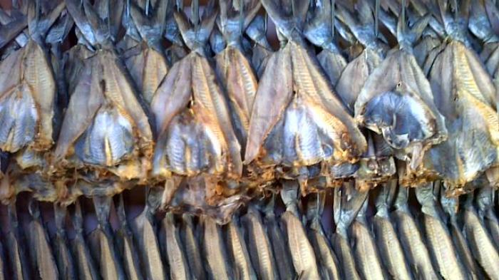 Bahaya Sering Makan Ikan Asin Bisa Kena Penyakit Kanker Karsinoma Nasofaring