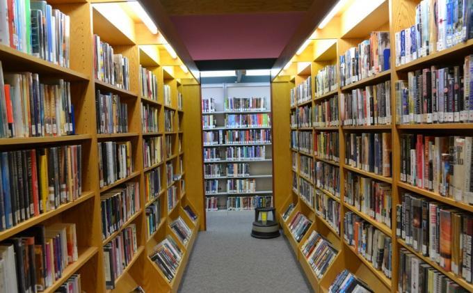 Tingkatkan Minat Baca Warga OKI dengan Perpustakaan Digital