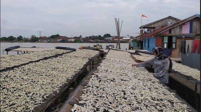Melihat Kampung Pembuatan Ikan Asin 5 Ulu Palembang, Produksi Ratusan Kilogram Setiap Hari