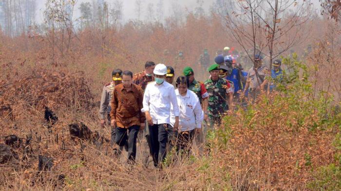 Presiden Jokowi Divonis Bersalah oleh Pengadilan Tinggi Palangkaraya, Ini Hukumannya