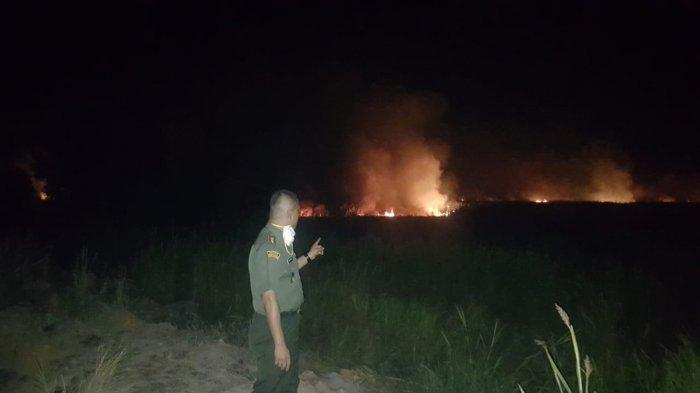 Kebakaran Hutan dan Lahan Selalu Terjadi di Ogan Komering Ilir, Ini Kata Bupati