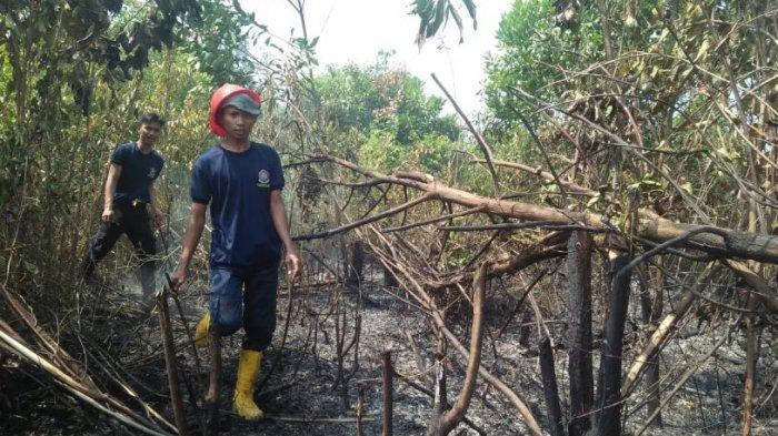 Lahan 1,5 Hektare di Lubuklinggau Terbakar, Warga Diminta Jangan Buang Puntung Rokok Sembarangan