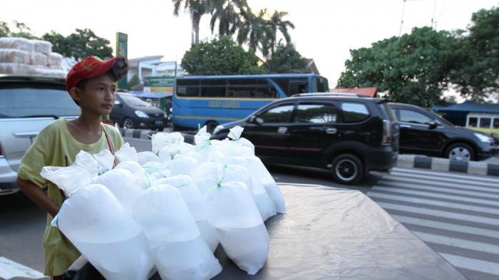 Hati-hati! Konsumsi Air Kelapa Muda Malah Bisa Jadi Racun Jika Diminum Penderita 5 Penyakit Ini
