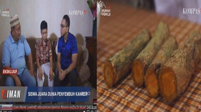 1 Bulan Sembuh Total, Cerita Khasiat Tanaman Bajakah Sembuhkan Kanker ...