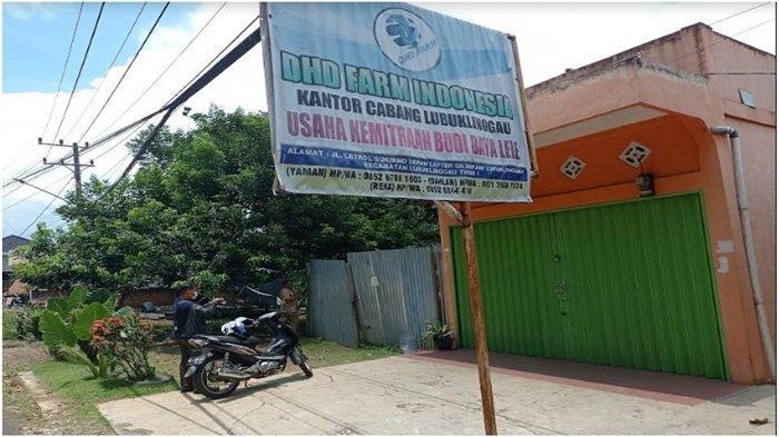 Penipuan Investasi Lele Organik, Kantor Cabang DHD Farm Indonesia Lubuklinggau Sudah Sebulan Tutup