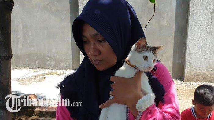 Kisah Nyata Kucing Jadi Penyelamat Satu Keluarga di Mojokerto, Seusai 3 Kali Diteror Ular Kobra