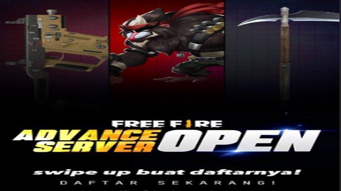Cara Daftar Advance Server Free Fire Ff November 2020 Berhadiah Diamond Buruan Tribun Sumsel