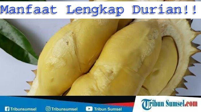 Ibu Hamil Boleh Makan Durian, Simak Penjelasannya Disini