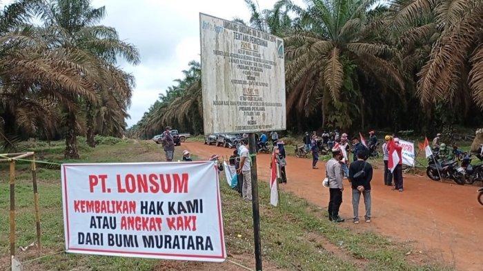 Hindari Konflik, Perusahaan dan Warga Sepakat Sama-sama Tak Panen Sawit di Lahan Sengketa