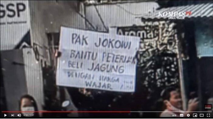 Nasib Petani yang Bentangkan Poster 'Bantu Peternak Beli Jagung' ke Jokowi Usai Ditangkap