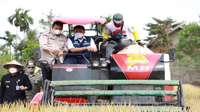 Panen Raya di Desa Sako Banyuasin, Herman Deru Optimis Sumsel Jadi Lumbung Pangan Nasional