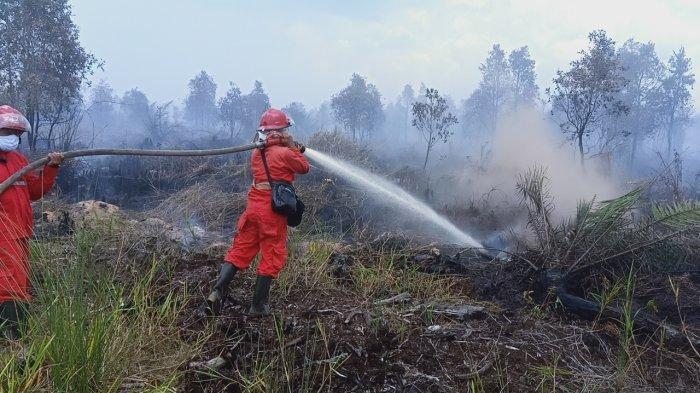 Pemerintah Kabupaten Ogan Komering Ilir Bentuk Lembaga Pencegahan Karhutla