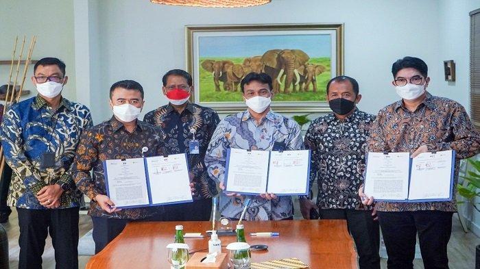 Sinergi BUMN: PLN, PTBA dan KAI Amankan Pasokan Batu Bara untuk Ketahanan Ketenagalistrikan Nasional