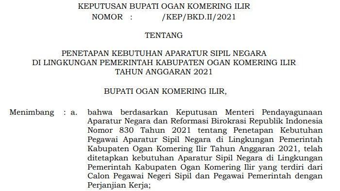 Link Download PDF Formasi Penerimaan CPNS dan PPPK Guru Kabupaten Ogan Komering Ilir (OKI)