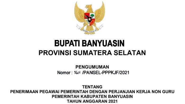 Download PDF Formasi CPNS dan PPPK Pemerintah Kabupaten Banyuasin Tahun 2021, Unduh File Disini