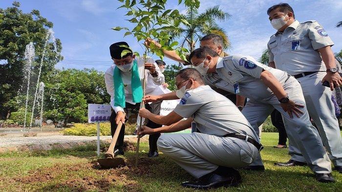 Jasa Raharja Donasikan 142 Pohon Tabebuya ke Pemkot Palembang