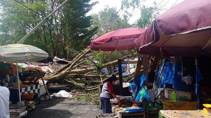 6 Kios Pasar Tradisional Saka Selabung OKU Selatan Ditimpa Pohon Tumbang