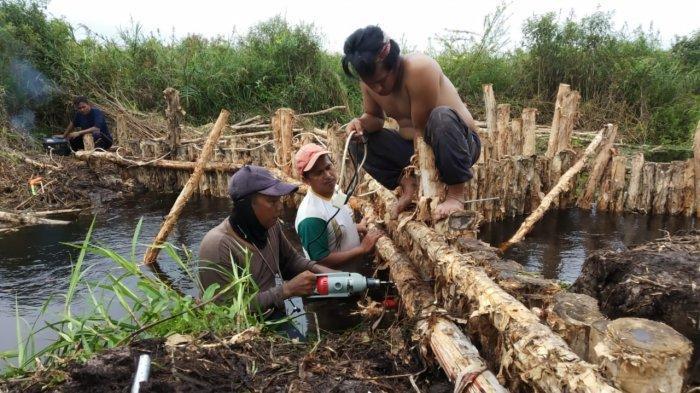Sekat Kanal Perdana Dibangun di Desa Siju Sumsel, Ini Harapan Warga