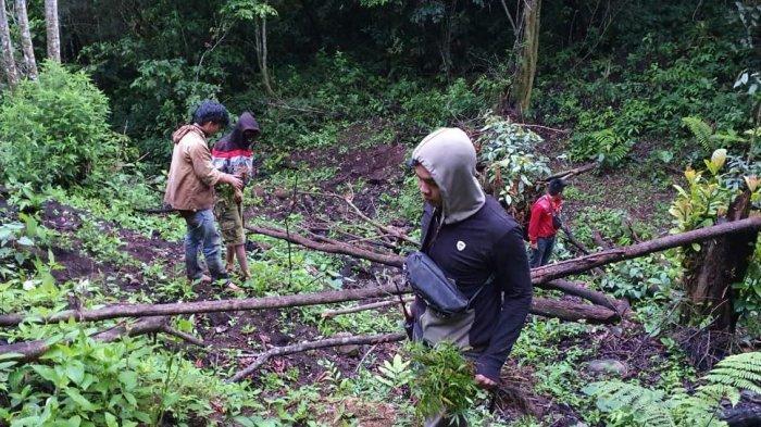 3 Petani Diamankan dari Penggerebekan Ladang Ganja di Pagaralam