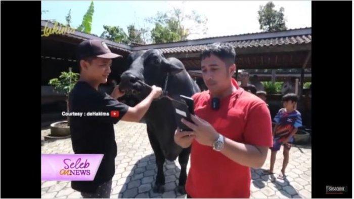 Potret Irfan Hakim saat tengah negosiasi membeli Grandong, sapi hitam jumbo untuk Kurban