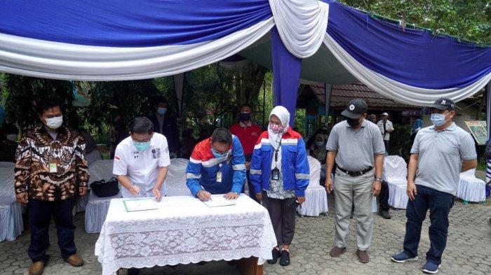 Pertamina Patra Niaga Gandeng Dinas Kehutanan Provinsi Sumatera Selatan Lestarikan Pohon Unglen