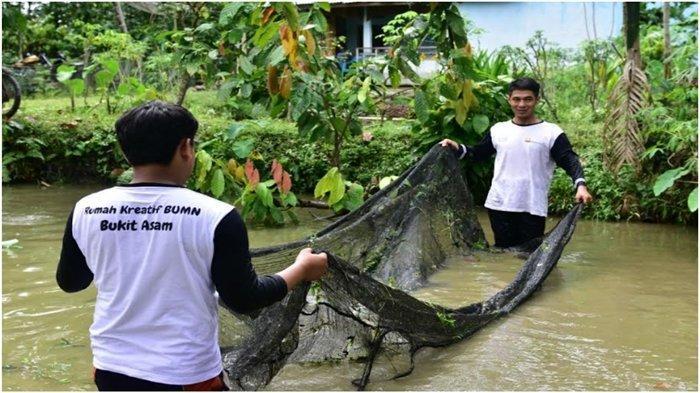Sekali Panen Putra Bisa Hasilkan 3 Ton Ikan Air tawar