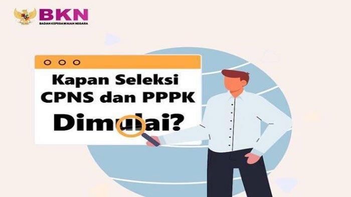 Berita Terbaru Seleksi CPNS dan PPPK 2021, Ini Bocoran Jadwal Pendaftaran Disampaikan BKN