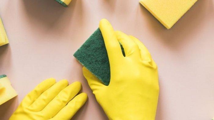 Spons Pencuci yang Sering Digunakan Ternyata Berbahaya untuk Kesehatan