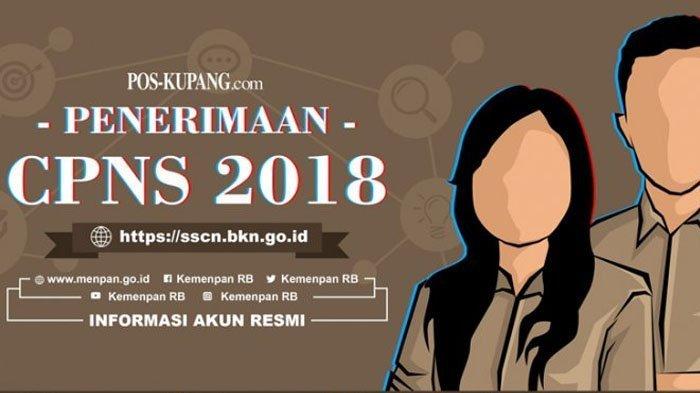 Rincian Formasi CPNS 2018 Lubuklinggau, Empat Lawang, Muratara, Musirawas: Download di Sini