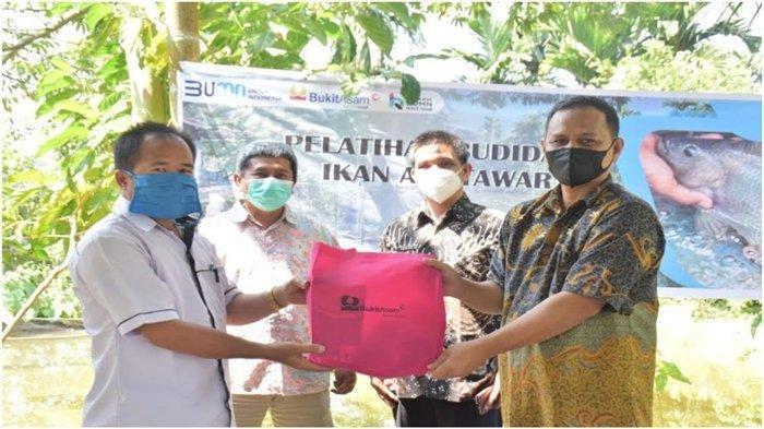 PTBA Gandeng Mantan Pekerja PETI Ikuti Pelatihan Budidaya Ikan Tawar